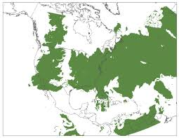 Map Size Comparison The Ibbenese Cartographer The True Size Of The North