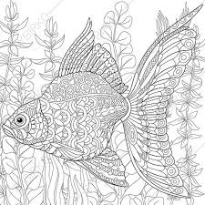 goldfish coloring page coloring book by coloringpageexpress