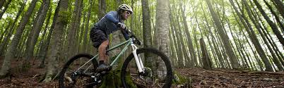 Commuting Mountain Bike Or Road by The Bike Fit Guide Sierra Trading Post