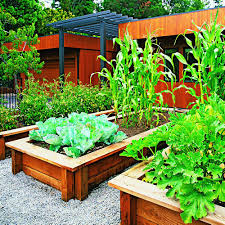attractive front yard garden beds front yard vegetable garden