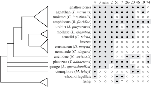 the cytochrome p450 genesis locus philosophical transactions of