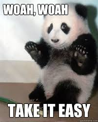 Woah Meme - woah woah take it easy panda take it easy quickmeme