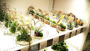 installer une cuisine 駲uip馥 model de cuisine 駲uip馥 100 images model de cuisine 駲uip馥