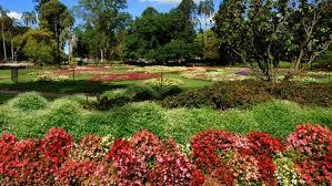 Botanic Gardens Brisbane City Brisbane S Botanic Gardens To Host Botanica Festival In