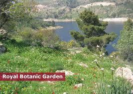 The Royal Botanic Gardens Welcome To The Royal Botanic Garden Of Royal Botanic Garden