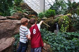 Botanical Garden Fort Wayne Foellinger Freimann Botanical Conservatory Home