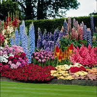 How To Plan A Garden Layout Flower Garden Layout Flower Garden Designs Flowers Three Season