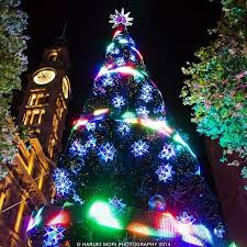 Christmas Decorations Online Sydney by 456 Best Christmas Oz Style Images On Pinterest Australian