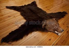 bear skin rug stock photos u0026 bear skin rug stock images alamy