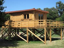 awesome house on stilts plans photos best inspiration home