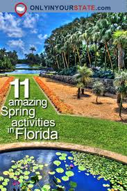 Florida nature activities images 108 best fun things to do around orlando images jpg