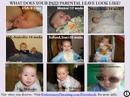 Maternity Memes - policy maternity leave matters evolutionary parenting where