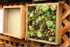 plain design how to build a living wall marvellous ideas making