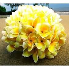 wedding flowers hawaii hawaii wedding flowers bouquet boutonniere tropical flow
