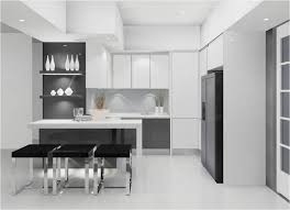 contemporary and modern design for your kitchen kitchen small contemporary kitchens design ideas and