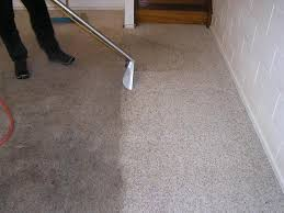 Carpet Cleaning in Alexandria