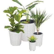 best 25 rattan planters ideas on pinterest small garden