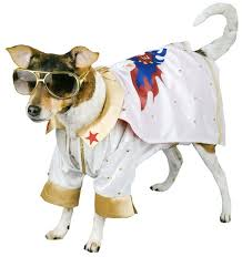 Elvis Halloween Costumes 7 Epic Dog Halloween Costume Ideas U2013 2015 Legendary Merch