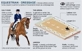 rio 2016 olympics equestrian guide