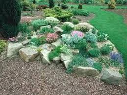What Is A Rock Garden What Is A Rock Garden Ghanadverts Club