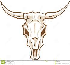 bull skull stock images image 25827794