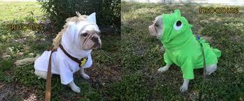 french bulldog boston terrier pug dog froodies hoodies halloween