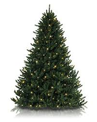 10ft christmas tree above 8 foot artificial christmas trees treetopia