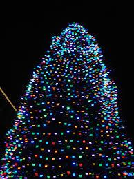 Light String Christmas Tree by Led Christmas Tree Lights Roselawnlutheran