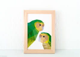 kakapo print new zealand bird art native nz bird art kiwi art