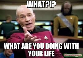What You Doing Meme - what what are you doing with your life meme picard wtf 11944