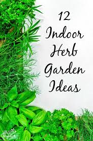 Ideas For Herb Garden 12 Indoor Herb Garden Ideas And Thyme
