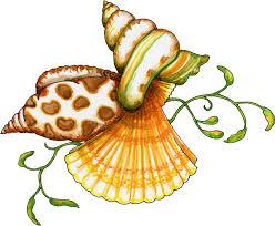 sea shell scorpian spider conch sea shells art cliparts and