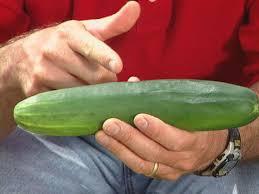 how to grow cucumbers how tos diy