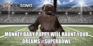 Baby Monkey Meme - super bowl puppy monkey baby creature from mountain dew commercial