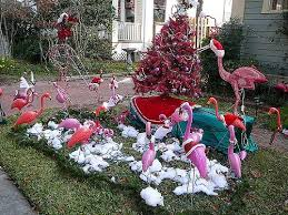 51 best pink flamingos images on pinterest pink flamingos