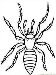 Spider Color Pages Spider Coloring Page Free Spider Coloring Pages by Spider Color Pages