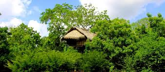 eco hotel yala tree house mud cottages beddegama ecopark