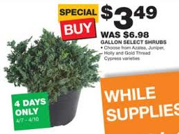 the home depot black friday ad gardening