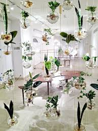 plant stand unique plant holders best indoor hangings ideas on