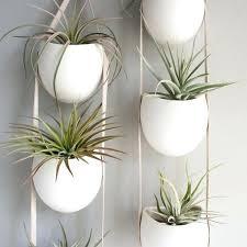 buy indoor planters uk indoor herb garden planter box best 25 herb