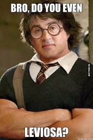 Stallone Meme - what if sylvester stallone was in harry potter meme guy