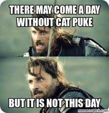 Puke Meme - may come a day without cat puke