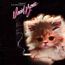 cat photo album 18 iconic albums with kittens on the cover kerrang great