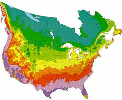 america climate zones map fernlea flowers ltd hardiness zone map