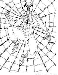 coloring marvelous spiderman print spider man