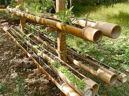Bamboo Garden Design Ideas Bamboo Garden Design Ideas Wilson Garden