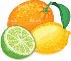 lime slice silhouette composition of tropical orange lemon and lime fruits group of ripe