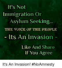 Seeking Voice Of Lt S Not Immigration Or Asylum Seeking The Voice Of The Lts