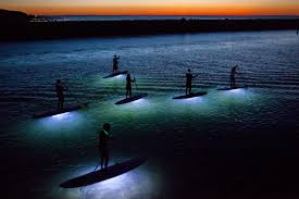 kayak lights for night paddling cape cod nighttime sup excursions chatham ma