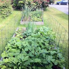 square foot vegetable garden ideas 16 fascinating square foot